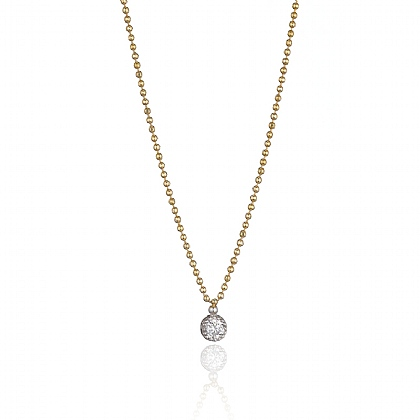 Gold-plated Sparkling Delicate Necklace