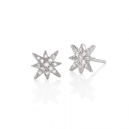 Star Attraction Stud Earrings